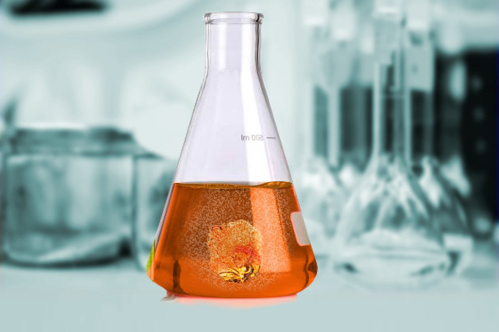 SQT® Spongilla Spicule2.0 upgraded solvent-chromic acid