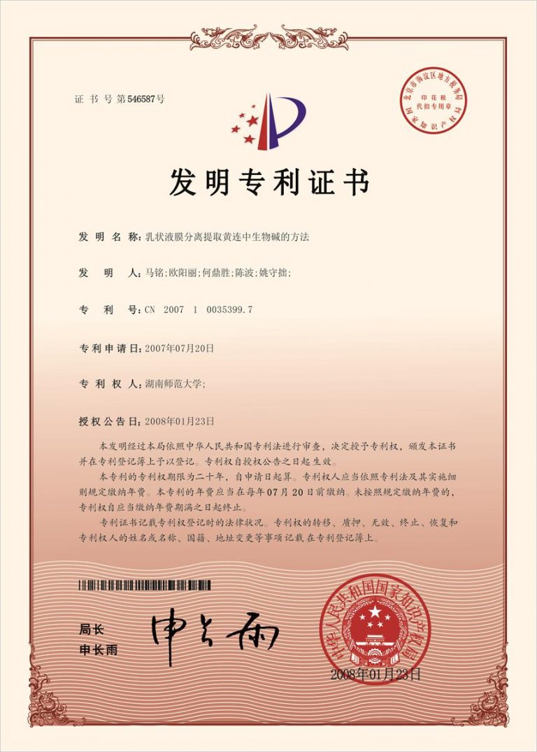 Authorized Invention Patent-06